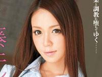 【エロ動画】もしも藤井シェリーが女教師ペットだったら…