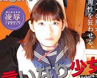 スカイエンジェル Vol.4 言いなり少女 : 永井さくら